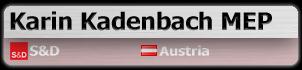 Karin Kadenbach MEP (S&D, Austria)